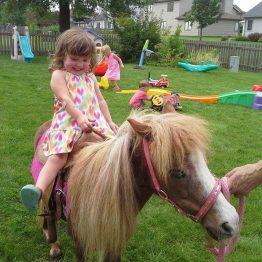 Peyton pony